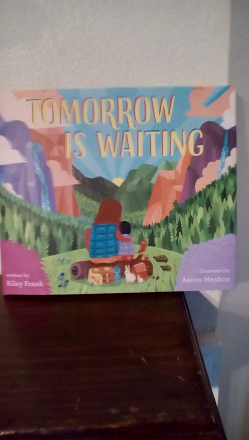 beautiful picture book with colorful illustrations that help tell the story of exploring every day