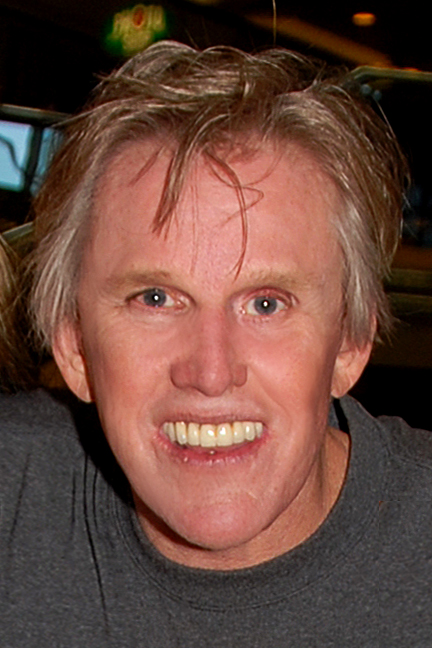 Busey in 2007/