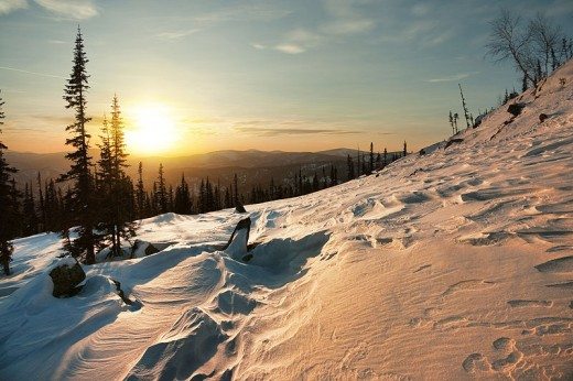 The low winter sun gives a golden glow to a snowy landscape.