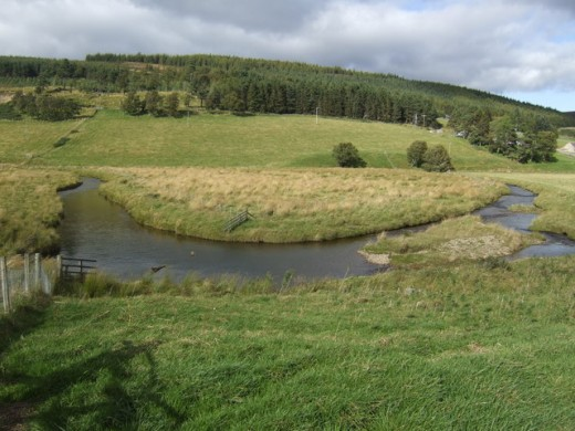 The flow-rate slows and the river meanders through the flood plain in the widest part of the valley