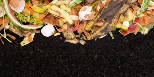 Composting and Vermiculture