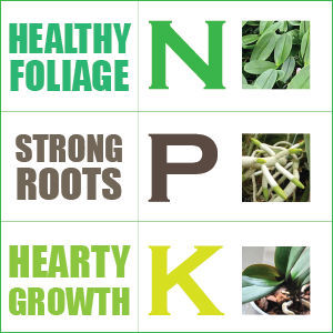 This a simple way to remember what your Nitrogen Phosphate and Potassium add to your plants.With proper care and love you can create a beautiful garden by starting with the base. The dirt. With the use of NPK you can greatly increase your yield for a