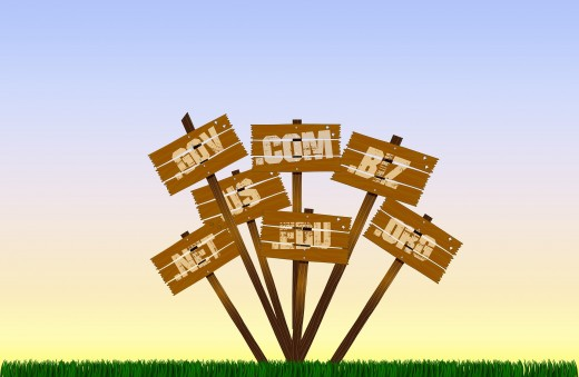 Getting a Website and a Domain Name for your Business