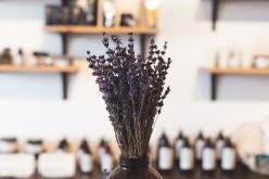 The Extensive Benefits of Lavender: The Herb and Essential Oil
