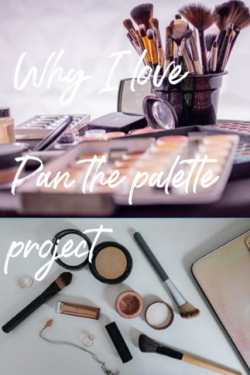 Why I Love Pan the Palette Projects