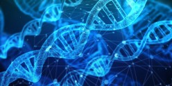 Telomere Hacks to Stay Younger and Live An Optimally Longer Life