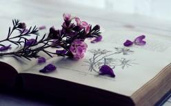 Inspirational Romance Books Explained