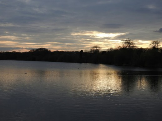 A photograph of Terry's Pool, Earlswood taken just after dusk.