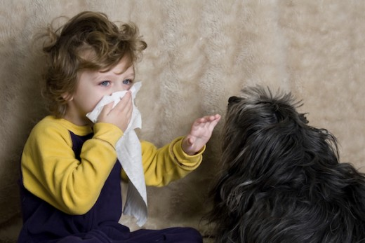 Exposure to allergens, such as pet dander, is one of asthma triggers.