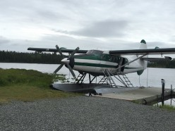 Floatplane Trip and Bear Encounter in Alaska