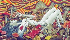 Psychedelic Art! a Varied Collection for Your Mind! Behold!!