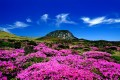 Traveling to Another World - Jeju Island, South Korea: Best Honeymoon Destination