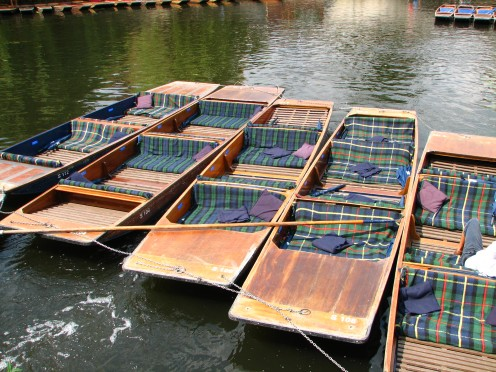 Punts at River Cam