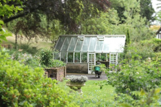 A greenhouse nestled among trees in a backyard.