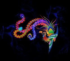 Like the Fabulous Phoenix, Learn to Fan the Flames of Past Failures and Rise from the Ashes Renewed and Reborn