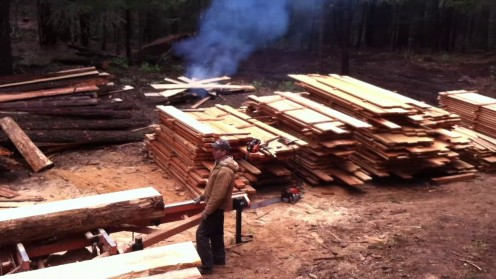 Typical sawmill output