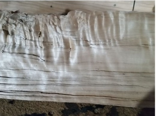 grain on wood chunk