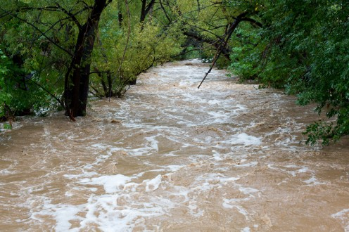 A flooded creek