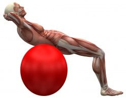 Stability Ball Workout Routine-Incorporate these Stability Ball Exercises into your Workouts for Next Level Results