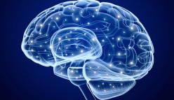 Mental illness: the brain you don't know