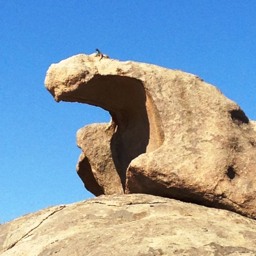Can You See Her? An Aqami lizard on top of the stunning rock formation.