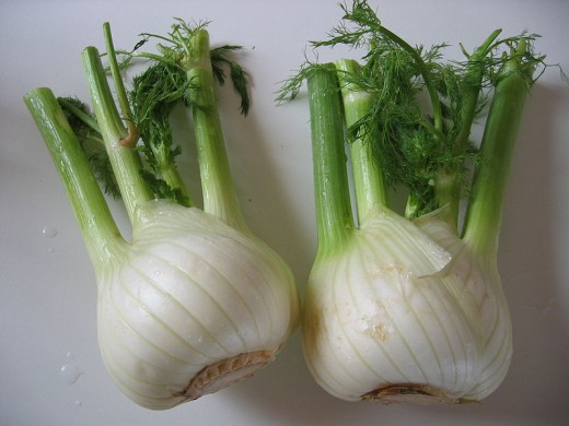 Fennel bulbs - this photo is in the public domain