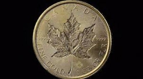 A very pure Canadian Maple Leaf gold coin.