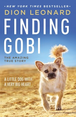 Finding Gobi Book Review