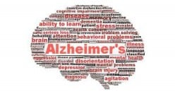 Alzheimer's Disease: A Poorly Understood Neurodegenerative Disease