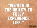 Definition of Wealth