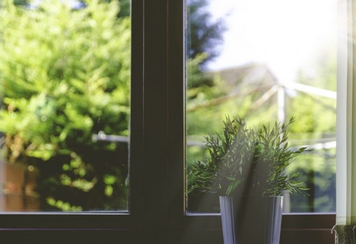 Looking out the window reminds us that we coexist with the world outside our homes.