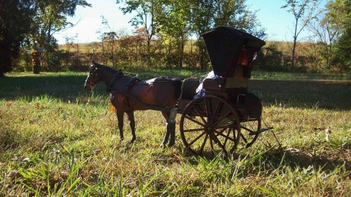 A Carriage Arriving at a Dinner Party