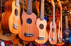 Which Ukulele is Best for a beginner, soprano, concert, tenor or baritone? Why?