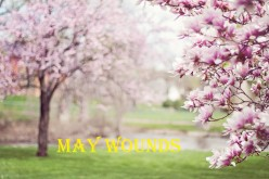 May wounds: A Poem