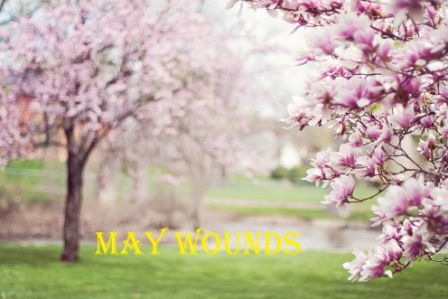 May Wounds