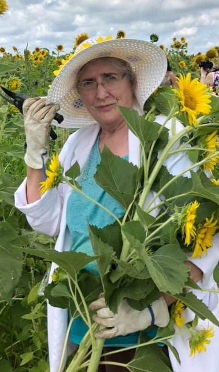 Wind picking up; I almost lost my hat getting some smaller Sunflowers