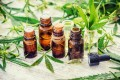 Will CBD Oil help me treat my anxiety and stress?