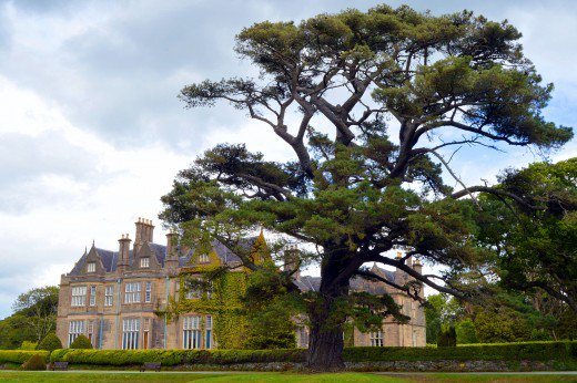 The beautiful Muckross House and Gardens is one of the first major attractions on the ring.
