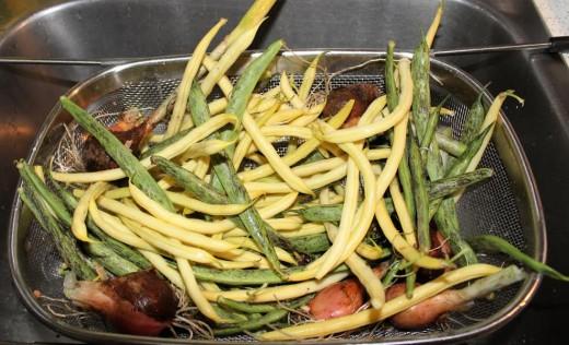 First harvest.
