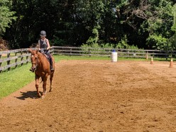 Problem Solving For Horseback Riders