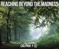 Reaching Beyond the Madness 2