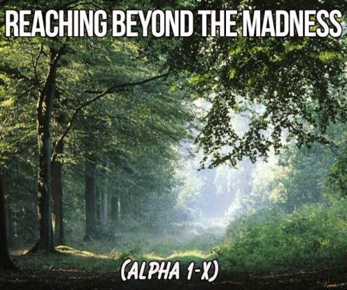 Reaching Beyond the Madness 8