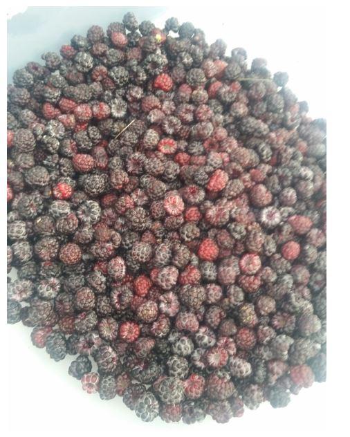 bowl full of berries