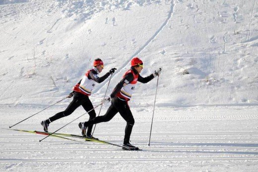 Skiers on Nordic Skis doing cross-country skiiing!