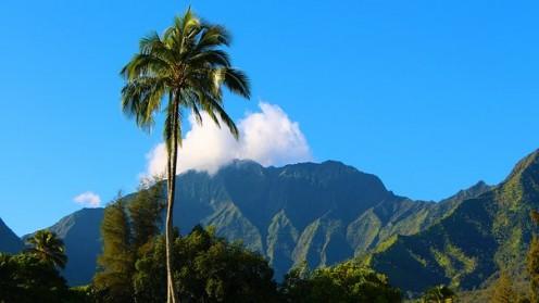 Top 8 Traditional Hawaiian Foods