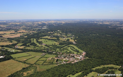 Aerial view of Epping Forest near London--note the interface of settled and wild areas