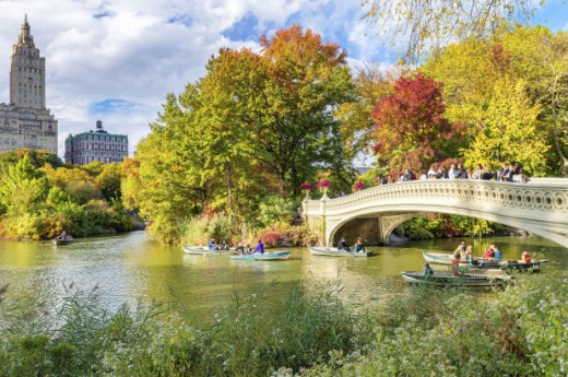 Ornate bridge in Central Park--shades of the Bois de Boulogne and the City Beautiful movement inherited from Europe
