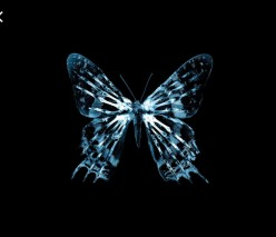 Butterfly Effect: Three Amazing Interactive Games