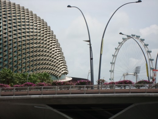 The Durian Buiding and the Singapore Flyer