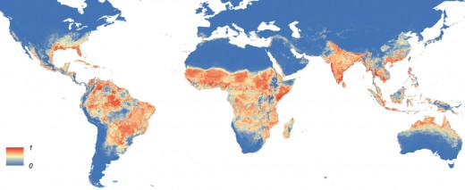 This map shows the distribution of the aedes aegypti mosquito that carries yellow fever.